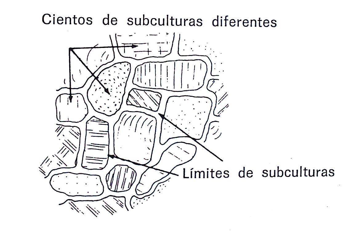 DSC_0068 (2)